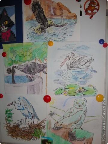 Мой сынуля любит рисовать, и конечно,  хочется работами любоваться, куда-то их выставлять. Раньше для этих целей использовалась стена на кухне. Работы прикалывались иголочками и кнопками. Но, потом в кухне был сделан ремонт и стену решили заменить холодильником.  фото 7