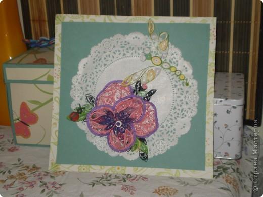 А это тот самый первый цветок, только не одинокий, а с подружкой - стрекозкой! фото 1