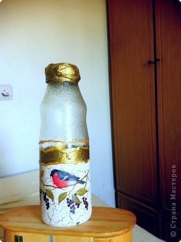 Новая жизнь бутылки из под сока гуявы