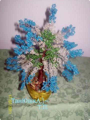 Деревья и Цветы фото 1