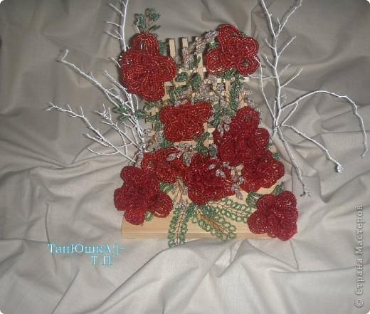 Деревья и Цветы фото 6