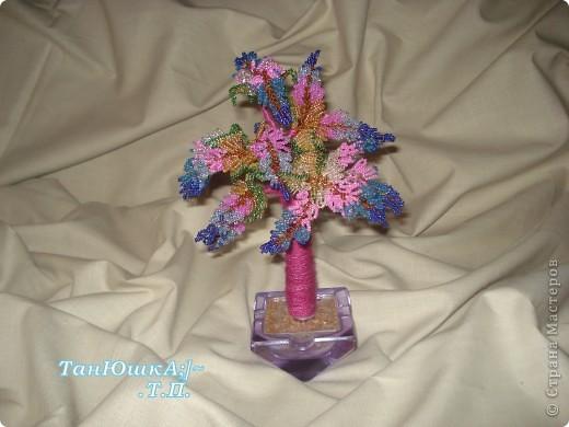 Деревья и Цветы фото 8