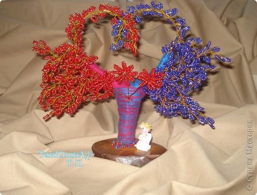Деревья и Цветы фото 10