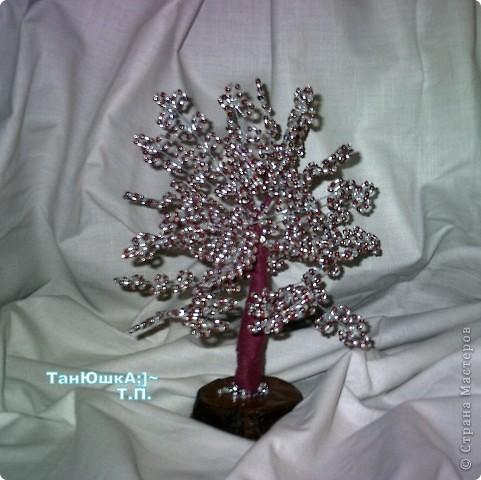 Деревья и Цветы фото 19