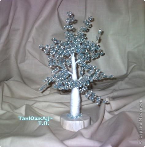 Деревья и Цветы фото 18