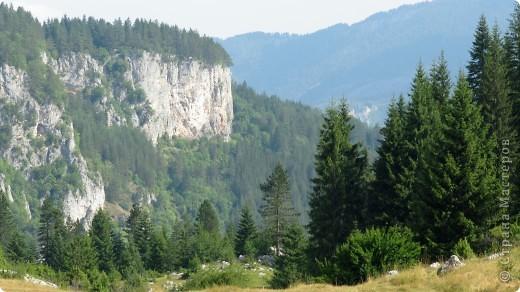 Хочу показат вам маленкая частица из прекрасная гора Родопи, Болгария фото 5
