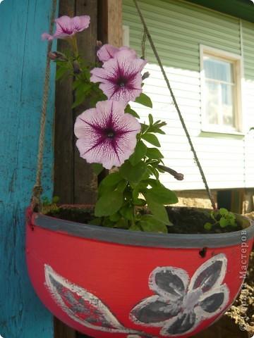 Приглашаю вас прогуляться по моему участку. в своем доме мы живем только 6 лет, до этого всю жизнь прожила в квартире. Очень люблю лилии, поэтому и свой цветник начала создавать с посадки именно этих цветов. фото 9