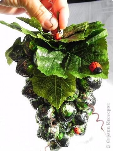 Виноградная гроздь .Состоит из 52 конфеток Марсианка фото 1