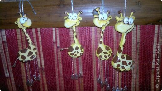 Веселые жирафчики фото 1