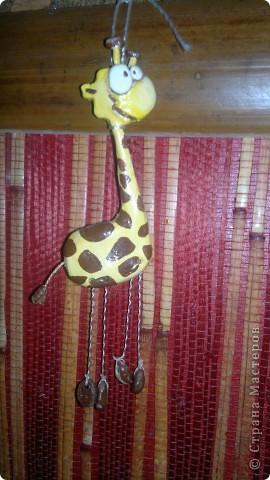 Веселые жирафчики фото 2