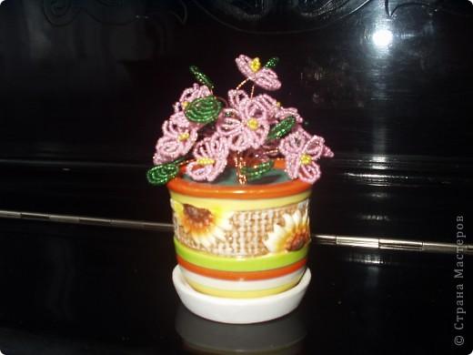 Нашлась еще более давняя работа дочурки - подарок бабуле на юбилей. Тут помощь моя - только покупка горшочка и придумка с губкой для мытья посуды... фото 2