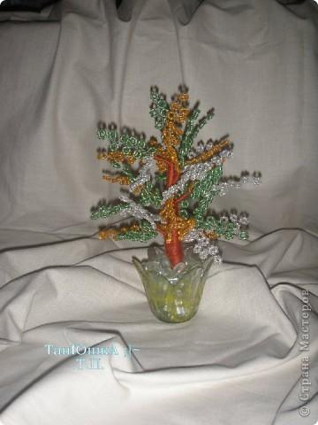 Деревья и Цветы фото 20