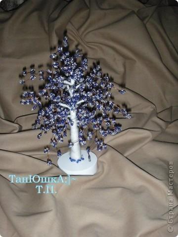 Деревья и Цветы фото 21