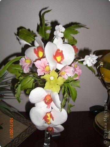 Мой первый цветок