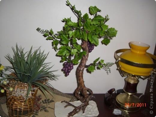Вот решила сотворить,что то похожое на бонсай.Увидела такое дерево в одном японском журнале.Там у дерева только ствол и виноград из холодного фарфора(или из полимерной глины),листья из ткани.Я решила сделать все из холодного фарфора.Ствол дерева обклеила корой березы и покрасила.Оно еще не идеально,в сровнении с роботами на сайте.Буду стараться. фото 2