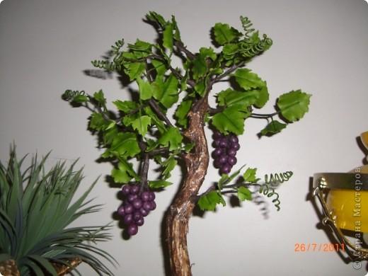 Вот решила сотворить,что то похожое на бонсай.Увидела такое дерево в одном японском журнале.Там у дерева только ствол и виноград из холодного фарфора(или из полимерной глины),листья из ткани.Я решила сделать все из холодного фарфора.Ствол дерева обклеила корой березы и покрасила.Оно еще не идеально,в сровнении с роботами на сайте.Буду стараться. фото 4