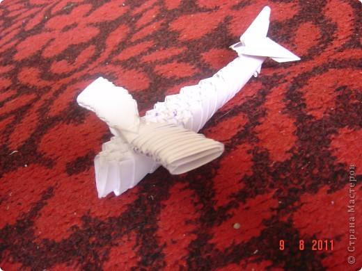 А это мой самолёт. фото 4