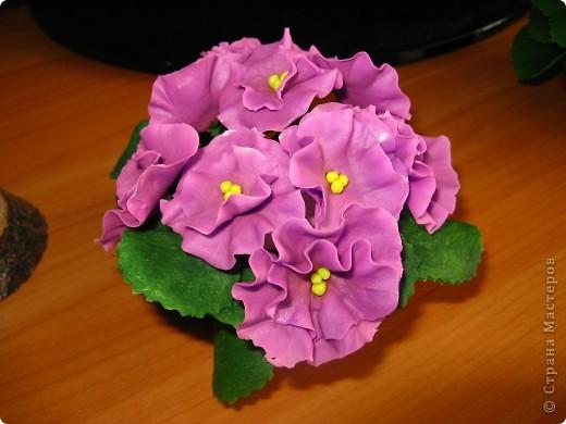 Фиалка. На самом деле лиловая, а тут ярко розовая. Это одна из последних моих работ (больше всех нравится мне) фото 1