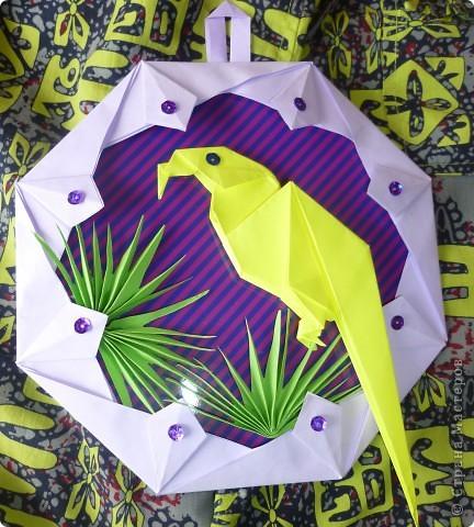 Желтый попугайчик фото 1