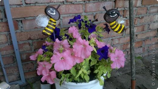 Здравствуйте, уважаемые мастерицы! Решила сделать маленький репортаж на своем участке. Хотелось запечатлить красту лета, ведь, по моему мнению, это самое прекрасное время года. Да здравтвует лето!!!! Это петуния с пчелками из пенопласта. фото 1