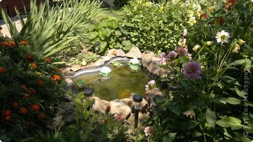 Здравствуйте, уважаемые мастерицы! Решила сделать маленький репортаж на своем участке. Хотелось запечатлить красту лета, ведь, по моему мнению, это самое прекрасное время года. Да здравтвует лето!!!! Это петуния с пчелками из пенопласта. фото 10
