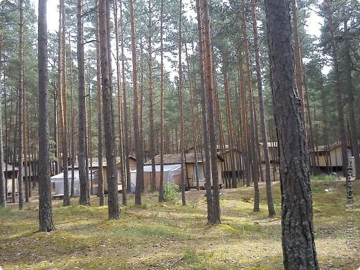 Говорят. где родился. там и пригодился. Поэтому отдыхать люблю дома, в родной Латвии. А если - Латвия, море, значит Юрмала! Национальная гордость страны. Но ,разочарую сразу - не Юрмала.  Там ,конечно хорошо, но суетно, шумно, тесно, дорого, много туристов. После учебного года хочется тишины, покоя. Вот об этом и пойдет речь!  Место, где всегда отдыхаю я ,называется Видземское взморье. Тоже Балтика, тоже Рижский залив. Но ТИШИНА!!! фото 49