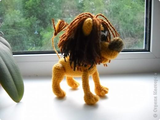 Я же лев! фото 1