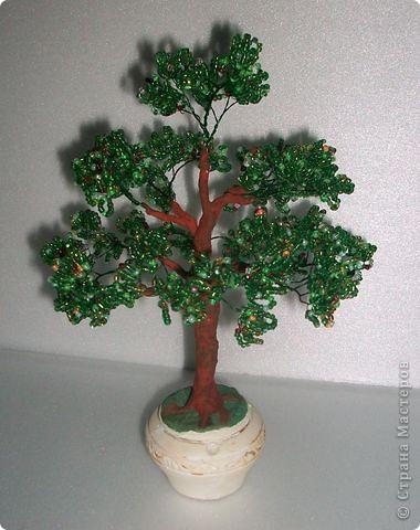 Это первое деревцо. фото 1