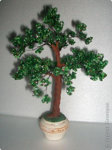 Это первое деревцо. фото 2