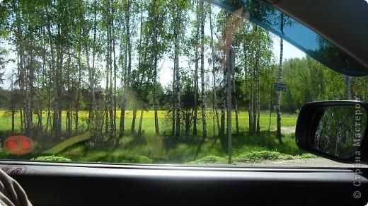 И вот  я появился на свет, это было весной, в мае, когда мои прежние хозяева собрались на юбилей к родственнице, на Украину. Родился и сложил губки в поцелуе, так как меня решили отвезти на новое место жительства. Ведь что моим хозяевам несколько сот километров ( а точнее 400) от того места где проходило торжество до города где живут их друзья. По началу друзья  были виртуальные, а теперь самые что ни на есть - настоящие. фото 7