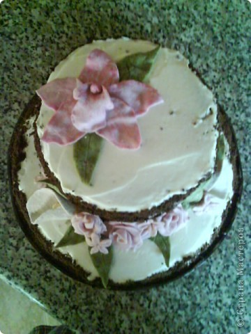 Вот такой тортик я сварганила на День рождение бабушке))) чесно такой большой торт пекла первый раз)) и наконецто получилась мастика, только на этот раз я делала из маршмеллоу а не желатиновую))) фото 5