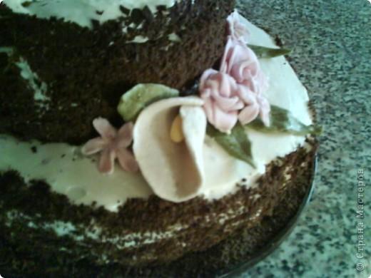Вот такой тортик я сварганила на День рождение бабушке))) чесно такой большой торт пекла первый раз)) и наконецто получилась мастика, только на этот раз я делала из маршмеллоу а не желатиновую))) фото 7