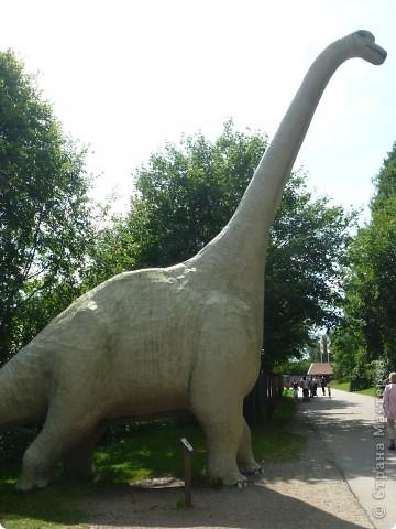 Эти Динозаврки установлены при входе в зоопарк. г. Борос Швеция. Они сделаны в натуральную величину, очень огромные. Детям очень нравится по ним лазить и играть. фото 2
