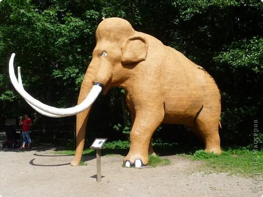 Эти Динозаврки установлены при входе в зоопарк. г. Борос Швеция. Они сделаны в натуральную величину, очень огромные. Детям очень нравится по ним лазить и играть. фото 6