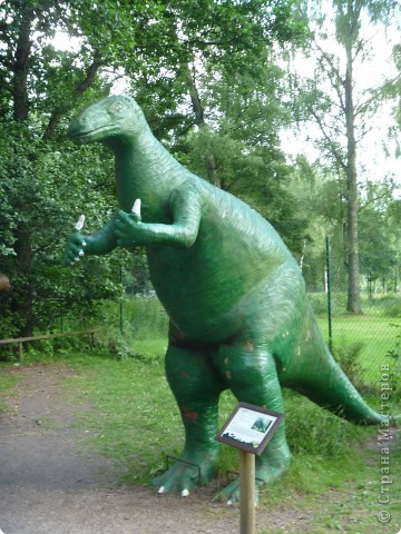 Эти Динозаврки установлены при входе в зоопарк. г. Борос Швеция. Они сделаны в натуральную величину, очень огромные. Детям очень нравится по ним лазить и играть. фото 14