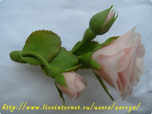 Первая проба. Заколка - розы. фото 2