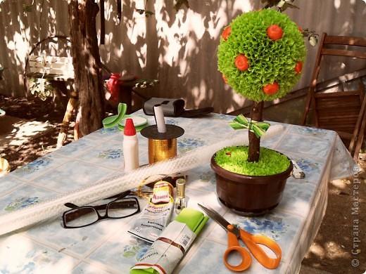 Летом отдыхала у сестры в Воронежской области. Понадобился оригинальный подарок друзьям детства на юбилей. Сделала мандариновое дерево из того, что удалось найти. Например, хотелось чтобы бумага была потемнее, но увы, что нашлось в магазине. Все равно подарок очень понравился. фото 3