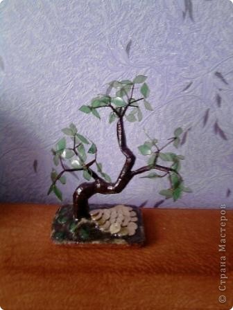 ещё одно деревце... фото 1