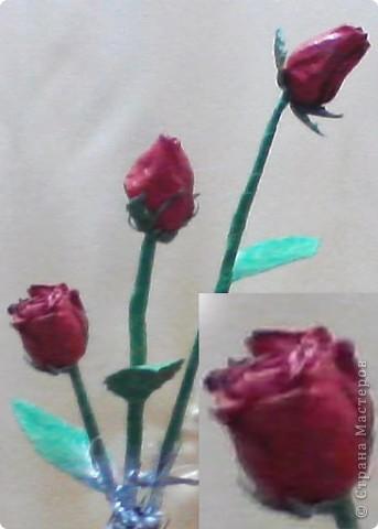 реальные сушеные розы фото 2