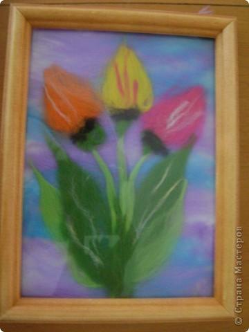 Тюльпаны фото 1