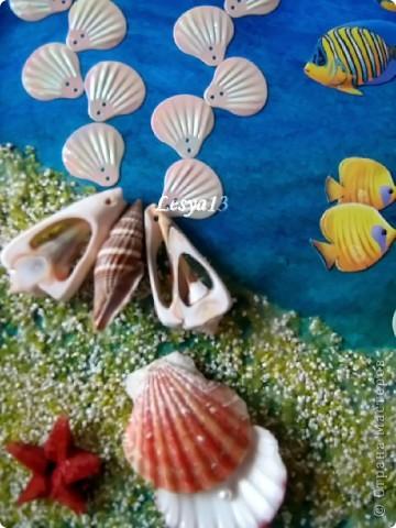 Коралловый риф фото 3