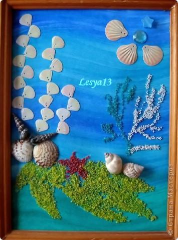 Коралловый риф фото 7