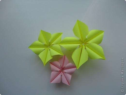 Колючка как-то придумалась сама, но что есть автор у этой колючки я не сомневаюсь, потому что модуль  уж очень простой.+ зелененькие вставочки, а цветочки это вариация Пуансетии Татьяны Высочиной. Делала их по фото. фото 3