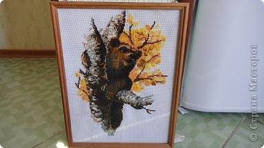 медведи, набор Золотое руно, размер 27х35, 37 цветов, 16 канва  фото 5