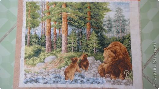 медведи, набор Золотое руно, размер 27х35, 37 цветов, 16 канва  фото 2