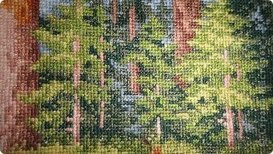 медведи, набор Золотое руно, размер 27х35, 37 цветов, 16 канва  фото 4
