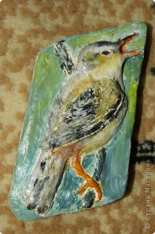 Пташка.Рельєф.Самозатвердаюча глина.Розфарбовувала акрилом для скла і кераміки.Дуже зручна штука і лакувати не треба.  фото 1