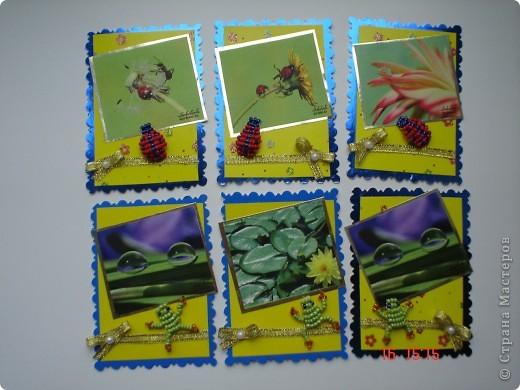 Продолжение серии. Использованы фото Т. Соколовой. Украшены бисерными лягушатами и божьими коровками. фото 1