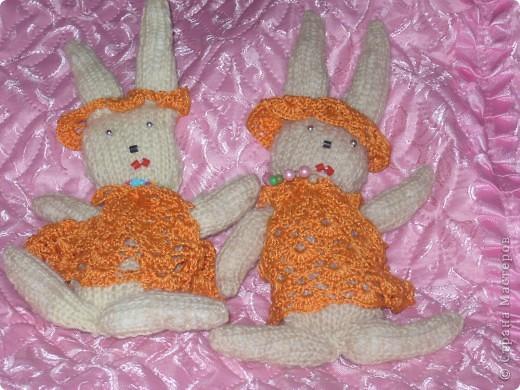 мои зайчата