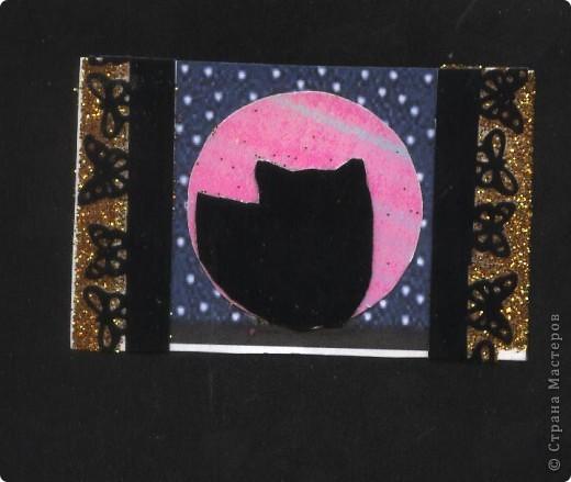 """Кошки под луной. Вы скажете """"РОЗОВАЯ""""?!? Нет, всё зависит от освещения. А вообще-то лимонно-жёлтая!!! фото 4"""